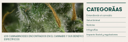 beneficios de cannabis