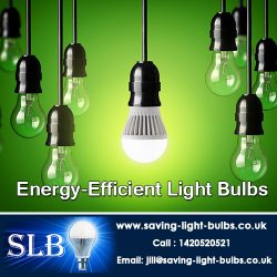 Energy-Efficient Light Bulbs