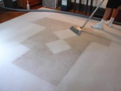 Rug Cleaning And Maintenance
