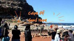 Cape Peninsula Tour Cape Town – Milebymile