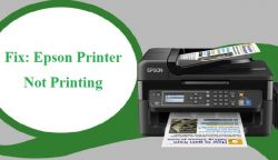 Fix: Epson Printer Not Printing