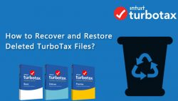 How can I view my Deleted TurboTax Files?