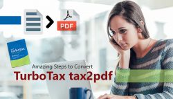 Amazing Steps to Convert TurboTax tax2pdf
