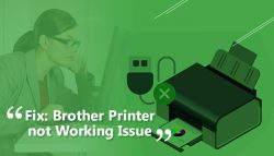 Fix: Brother Printer Not Working Issue