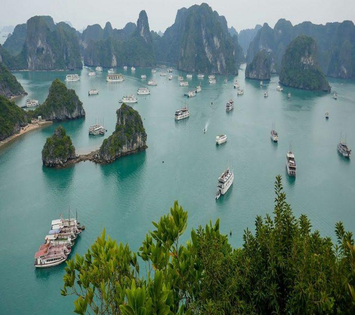 Explore Vietnam with the Best Vietnam Family Tours