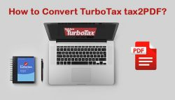 How to Convert TurboTax tax2PDF?