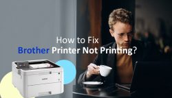 How to Fix Brother Printer Not Printing?