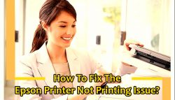 How to Fix the Epson Printer Not Printing Issue?