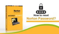 How to Reset Norton Password?