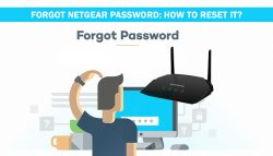 Forgot Netgear Password: How to Reset It?