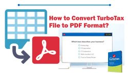 How to Convert TurboTax File to PDF Format?