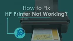 How to Fix HP Printer Not Working?