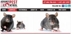 Rat control lanlgey