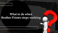 What to do when Brother Printer stops working?