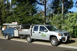 Perth Roof Repair & Restoration Ute