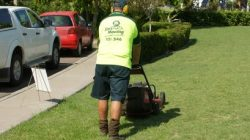 Lawn Care Service in Perth | Gardeners Perth