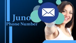 How to Fix Juno Email Not Working On iPhone?