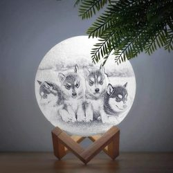 Personalized Creative 3D Print photo Moon Lamp