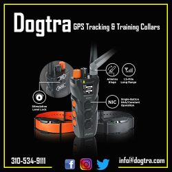 Dogtra – GPS Tracking & Training collars