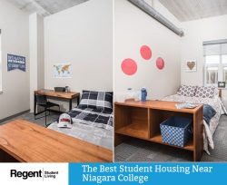 Regent Student Living – The Best Student Housing Near Niagara College
