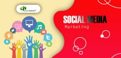 Promote your online business with the best Social media service by Design Host