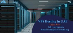 Fully Managed VPS Hosting in UAE