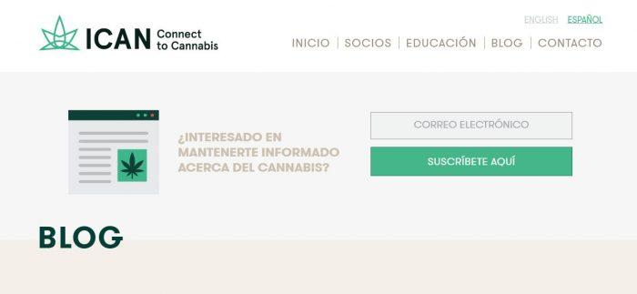 Aceite cannabis mexico