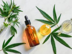 CBD TINCTURES AND CBD OILS; WHAT'S THE DIFFERENCE
