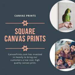 Square Canvas Prints – Canvas Prints
