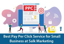 Best Pay Per Click Service for Small Business at Salk Marketing