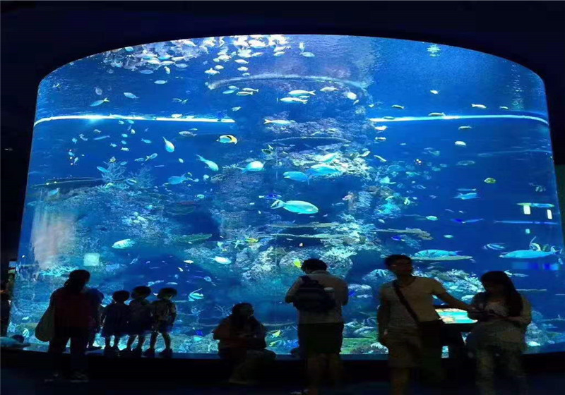 It is Very Necessary to Choose a Reliable Public Aquarium Manufacturer