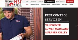Pest control burnaby