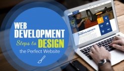 Web Development & Leader Skills – Mike Brassil NY