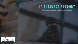 Comprehensive IT Business Support Services