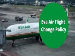 How Do I Check My Status with EVA Air?