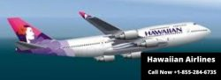 Fare Rules Terms and Conditions For Hawaiian Airlines