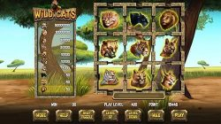 Wild Cats skill game