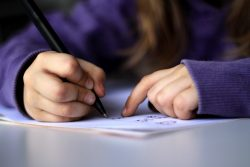 Writing Essay Writing Help To Score High Marks