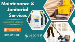 Economical Solutions for Janitorial Services