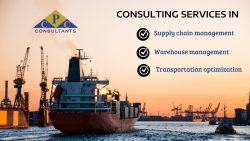 Expert Consulting Services