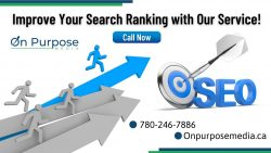 Find The Right SEO Service Company for Your Business