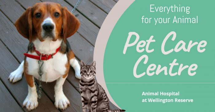 Getting Started With Animal Care