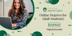 Options for Adults to Pursue Degree Online