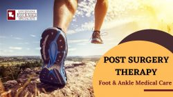 Productive Functions of Proper Ankle and Foot