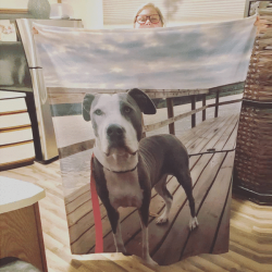 Custom Dog Blankets Personalized Pet Photo Blankets Custom Collage