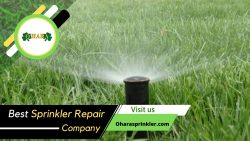 Professional Sprinkler Technicians for Your Home