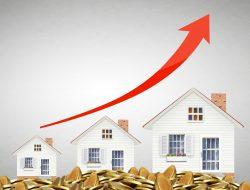 Property's & Investments – Subramonian Krishna Sarma