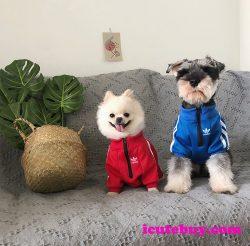 アディダス(Adidas)人気ブランドの犬服 ドッグウェア ペットウェアが満載。おしゃれな三つ葉ロゴデザ ...