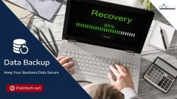 Backup and Data Recovery Services