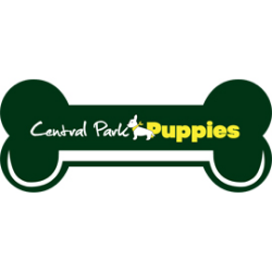 Puppies for Sale NY USA – Central Park Puppies